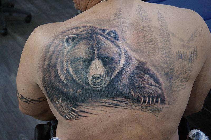 что означает картинка медведя саженец можно высаживать